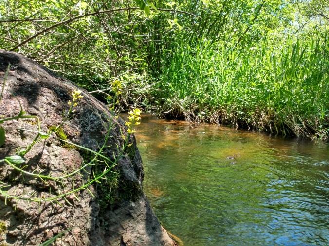 riveredge 3
